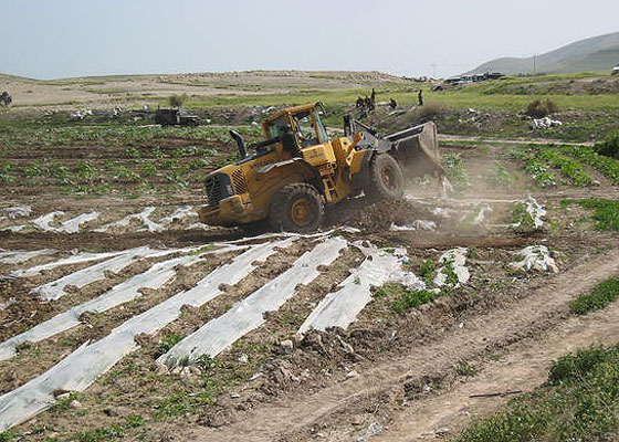 Vegetable crops and irrigation network being uprooted by an Israeli army bulldozer in Jiftlik